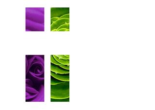 Blandine Vallé Fleuriste
